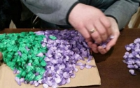 Многодетная мать из Кривого Рога организовала поставку метадона по всей Украине
