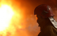 В Запорожской области мужчина сжег свою машину назло супруге