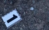 Дети нашли гранату на помойке