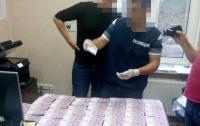 Требовали по 500 грн за декларацию: Раскрыта коррупционная