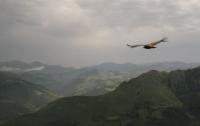 Орел стащил фотокамеру и снял видео полет