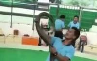 Кобра укусила дрессировщика на глазах у зрителей (видео)