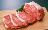 Вспышки АЧС в Украине: Рада вводит запрет на домашнее мясо
