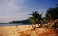 СМИ: в Таиланде после нападения акулы на человека закрыли пляж