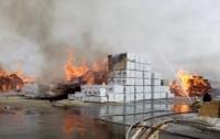 В России вспыхнул еще один крупный пожар (видео)