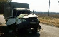На Донбассе дерево раздавило кабину авто с людьми