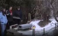 Австрийский подросток построил во дворе своего дома горнолыжный курорт (ВИДЕО)
