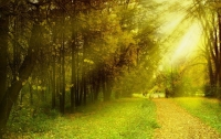 Ученые рассказали, как солнечный свет влияет на поведение людей