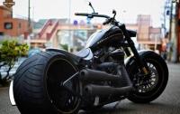 Более 50 тысяч мотоциклов Harley-Davidson вернутся на завод