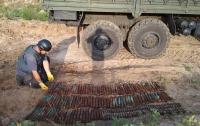 На Харьковщине на приусадебном участке обнаружили 200 взрывоопасных предметов