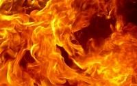 Пожар в запорожском кафе: сгорел мужчина