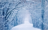 Синоптики ожидают, что зима в Украине будет рекордно теплой и дождливой