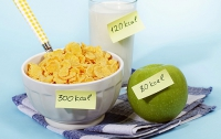 Подсчет калорий не поможет похудеть, - ученые