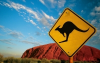 В Австралии нашли животное-клон покемона Пикачу