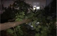Из-за шторма в Польше пострадал 41 человек, есть погибшие