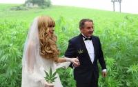 Мэр Глухова с супругой решил заработать на конопле