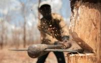 СМИ: В Славянске стреляли в лесорубов, ранены шестеро