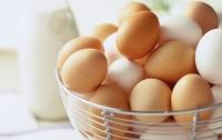 Украинский бизнес начал больше зарабатывать на яйцах