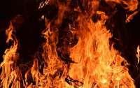 Огонь тушат самолеты, срочная эвакуация: пожар в Луганской области расширился