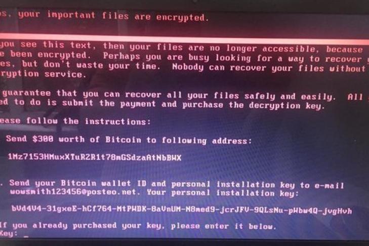 МВД предупреждает о волне кибератак и вирусе-вымогателе Petya