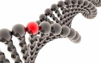 Ученые выяснили, можно ли заболеть раком из-за наследственности