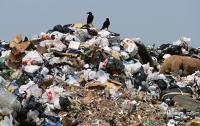 Американские рабочие просеяли 15 тонн мусора из-за золотого кулона