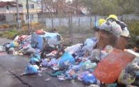 Житомирский городской глава лично взялся за уборку мусора
