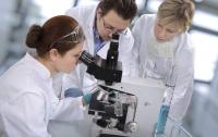 Обнаружены вещества, которые помогут в лечении болезни Альцгеймера