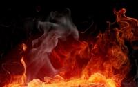 Труханов: митинги из-за пожара в детском лагере - проплаченные