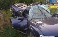Смертельное ДТП на Винничине: водитель врезался в дерево