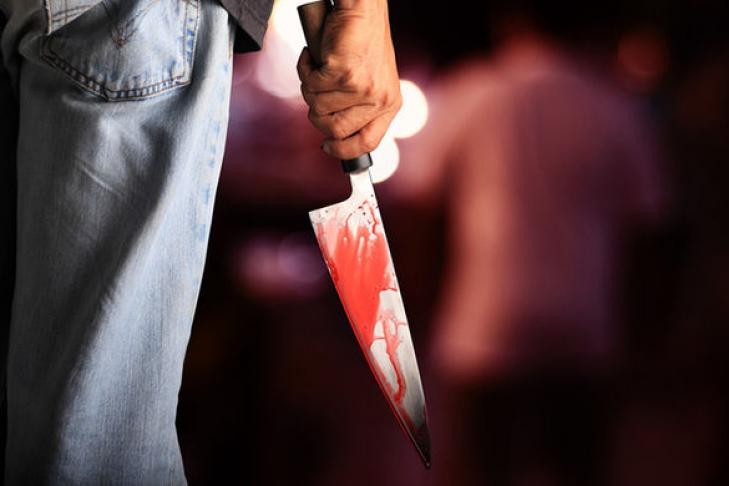 Два человека погибли в ходе нападений с ножом в Нидерландах