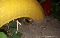 Мама сказала спрятать: в Николаеве на детской площадке оставили гранату