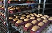 В Украине значительно подорожал хлеб