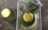 Одесситка устроила дома склад наркотиков