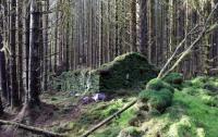 Раскрыта тайна затерянного в лесах загадочного сооружения