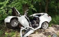 Под Винницей автомобиль влетел в дерево, погибли два человека (видео)