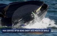 Біля узбережжя ПАР кит ледве не проковтнув дайвера (ФОТО)
