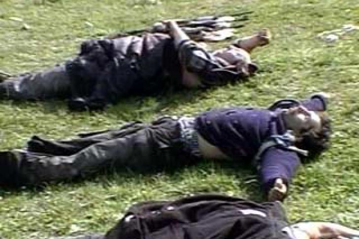 Ликвидированного в Чечне убийцу полицейского ранее судили за участие в НВФ