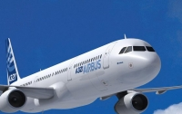 Пассажирский самолет экстренно сел из-за птицы