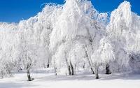 Какой будет зима 2017-2018 в Украине: прогнозы синоптиков