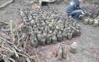 Прикарпатец закопал в трехлитровых банках 200 кг наркотиков