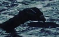 Лох-несское чудовище сфотографировали крупным планом