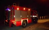 Пожары под Киевом: есть погибший и пострадавший