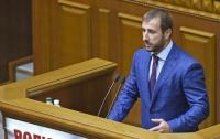 Создание ВСК по расследованию оффшорно-российского бизнеса радикала Рыбалки поддержали все фракции