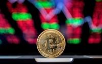 Bitcoin удержался выше восьми тысяч долларов
