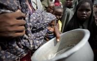 ООН: число голодающих в мире увеличилось впервые с 2003 года