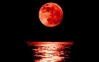 Лунное затмение 31 января: что нельзя делать