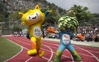 Власти Бразилии обещают победить вирус Зика до начала Олимпиады