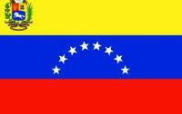 Досрочные выборы в Венесуэле состоятся в течение месяца
