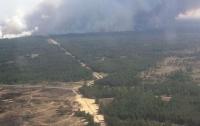 Пожар в Херсонской области охватил 100 гектаров леса